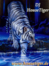 DJ-HouseTiger